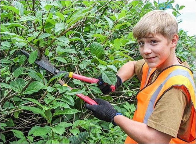 поисковик ульяновск работа для школьников на лето обязанности соискателя работы